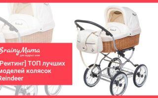 Рейтинг: ТОП-5 лучших колясок Reindeer