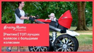 Рейтинг лучших колясок с большими колесами